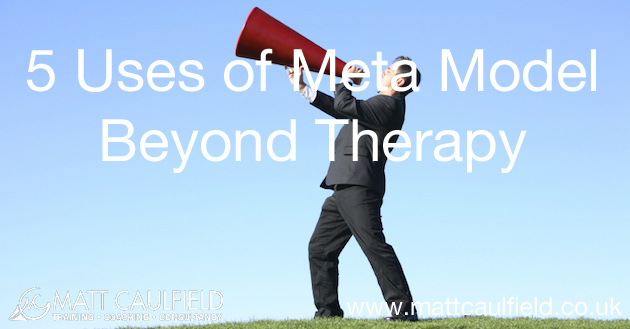 5 uses of the meta model
